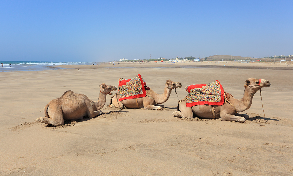 Asilah Beach Morocco